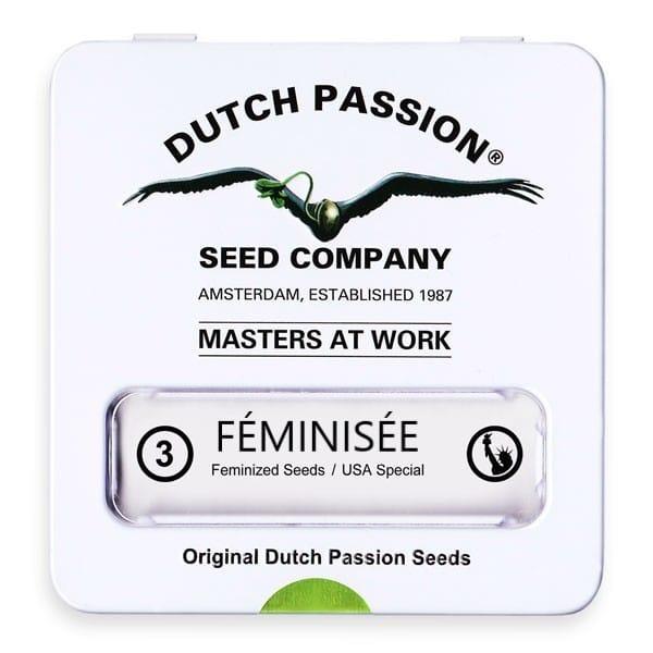 Graine de collection dutch passion x3