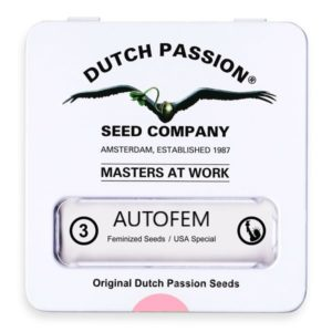 Graine de collection dutch passion x3 autoflo