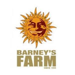 BARNEY'S FARM : Tous nos produits BARNEY'S FARM dans notre boutique Weed Seeds Luxe.