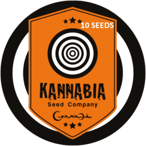 Graine de cannabis Kannabia X10