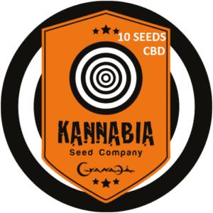 Graine de cannabis Kannabia X10 CBD