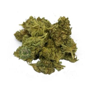 CBD LIMONCELLO WEED SEEDS LUXE