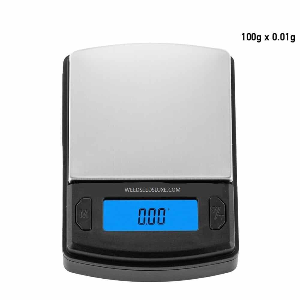 USA Weight Boston digital