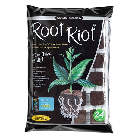 Cubes de germination Root Riot