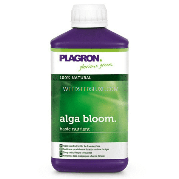 ALGA BLOOM – PLAGRON