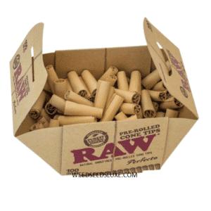 Cartons Conique Pré-roulés x100 RAW